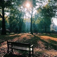What a beautiful image of Berkeley Square in the morning sunshine, just a short stroll from Flemings. Image courtesy of @carolinereceveurlucas :maple_leaf::fallen_leaf::maple_leaf: #London #Mayfair #luxuryquarter #berkeleysquare #flemingshotel #luxuryh
