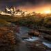 Serenade by JKboy Jatenipat :: Travel Photographer