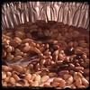 #homemade #caponata #caponatina #CucinaDelloZio - toast the pine nuts (pignoli)