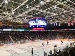 013:365 Hockey night in Canada