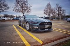 12.30 Mustang5.0-1