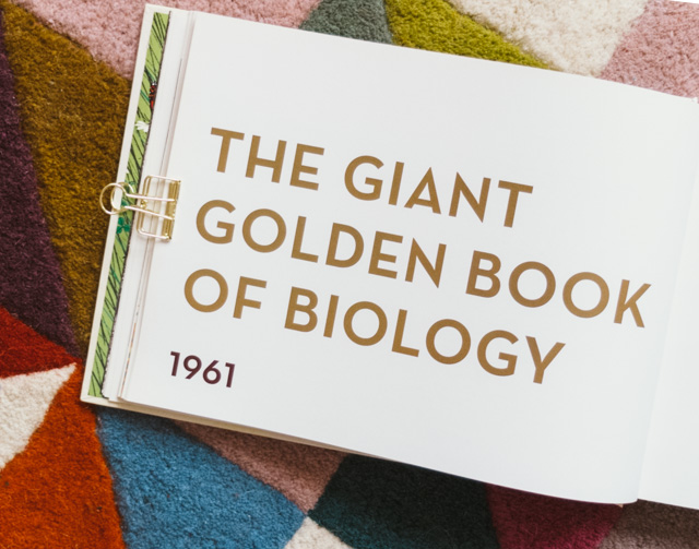 the giant golden book of biology