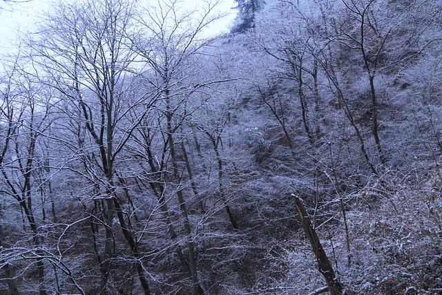 2015-02-23-18-18-44_a