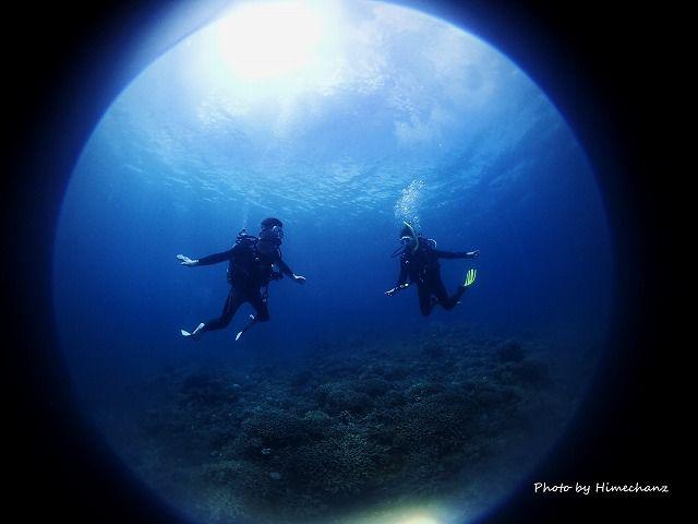 体験ダイバーとばったり会ったら、2人でジャンガジャンガ・・・。なんでやねん(笑)