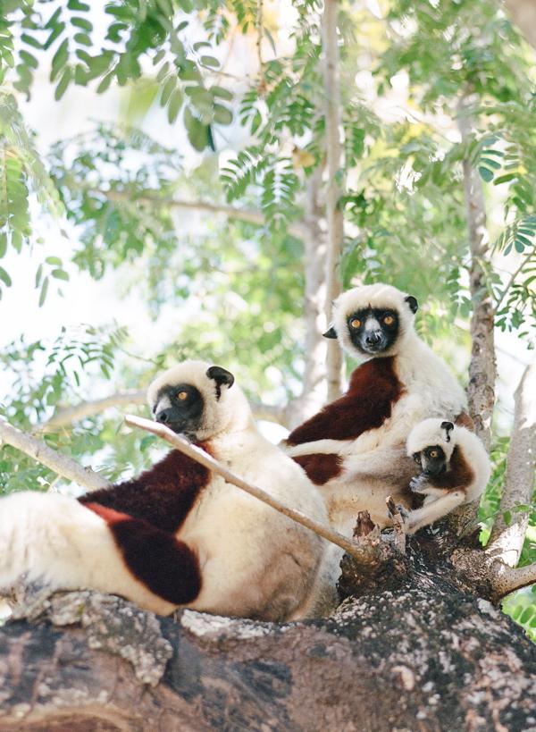 RYALE_Madagascar_Blog1_018