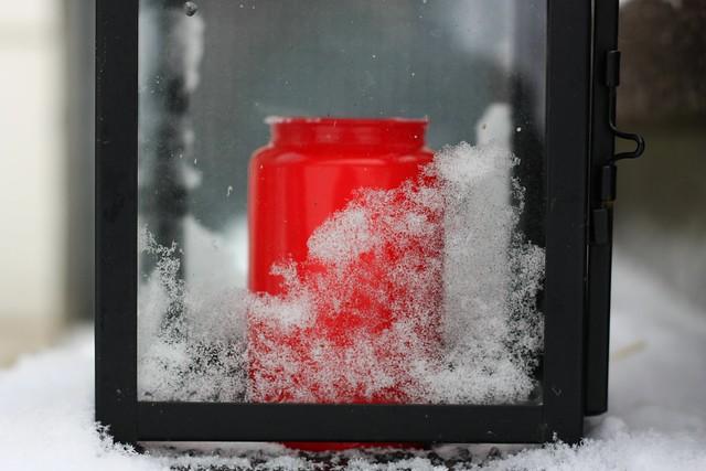 [267/365] Ice, ice baby!
