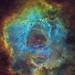 Rosette Nebula - NGC 2237 by Manifest Stephanie
