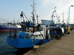 Fischkutter WŁA-32 im Hafen von Wladyslawowo