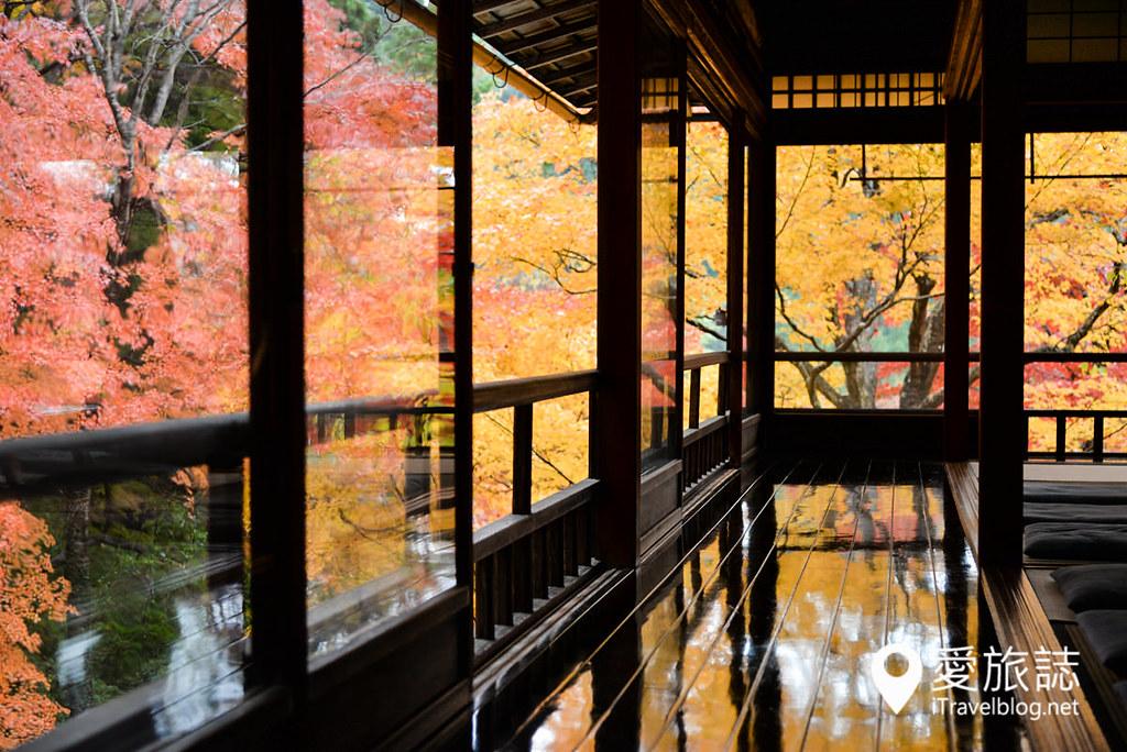 京都赏枫景点 琉璃光院 15