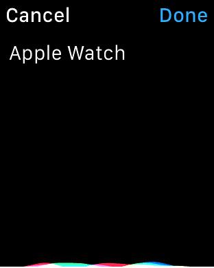 Siri Input