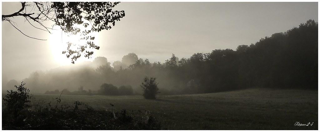 Matin de brouillard 21378871930_fe599ed8ee_b