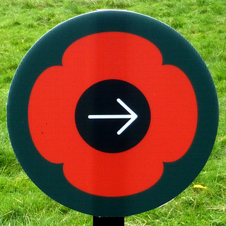 This way to the poppies
