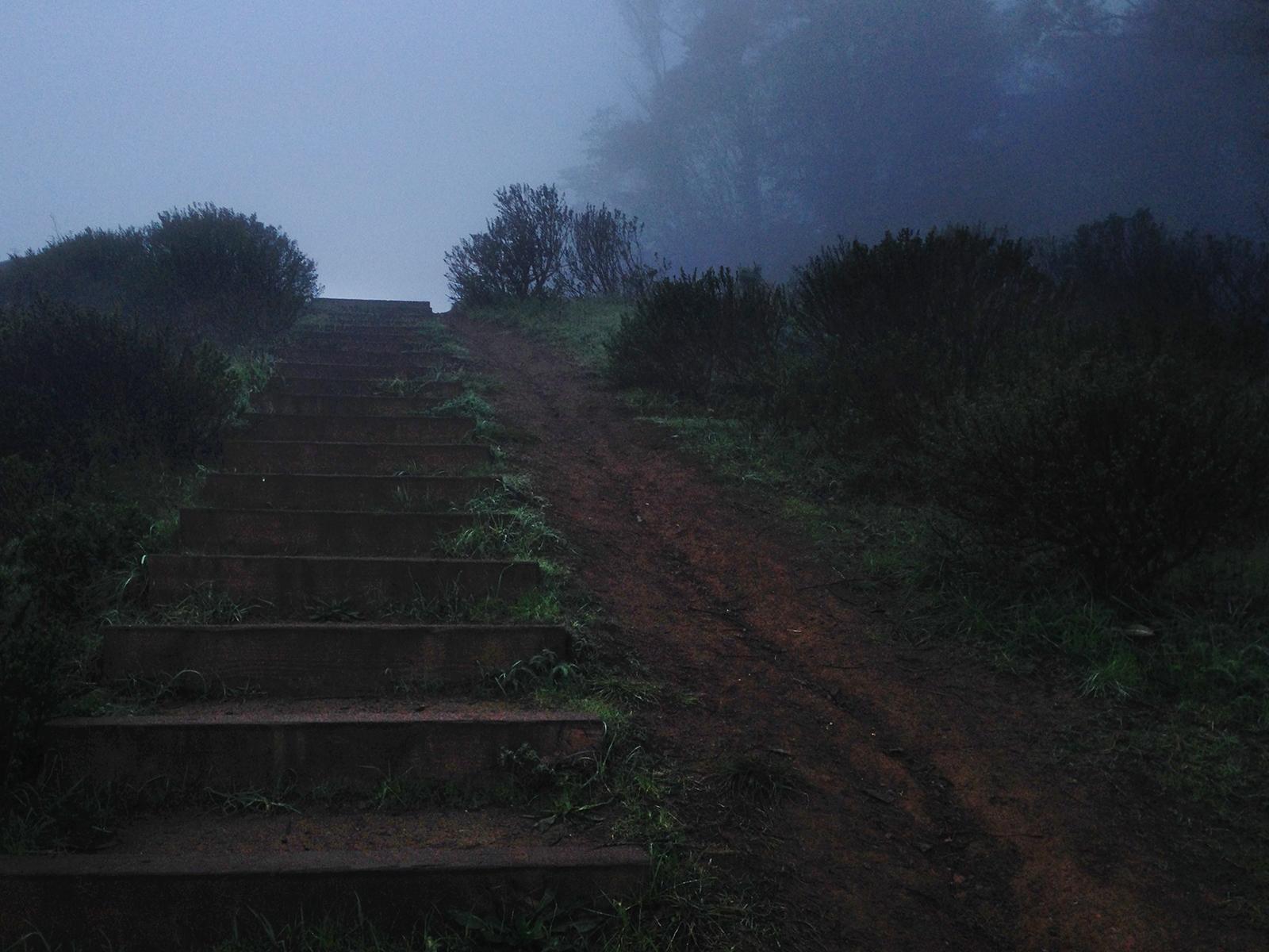 Morning at Mount Davidson