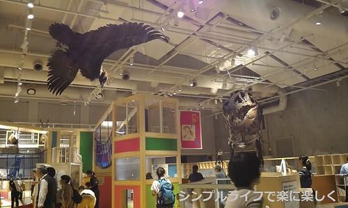 東京3日目、博物館・コンパス天井展示