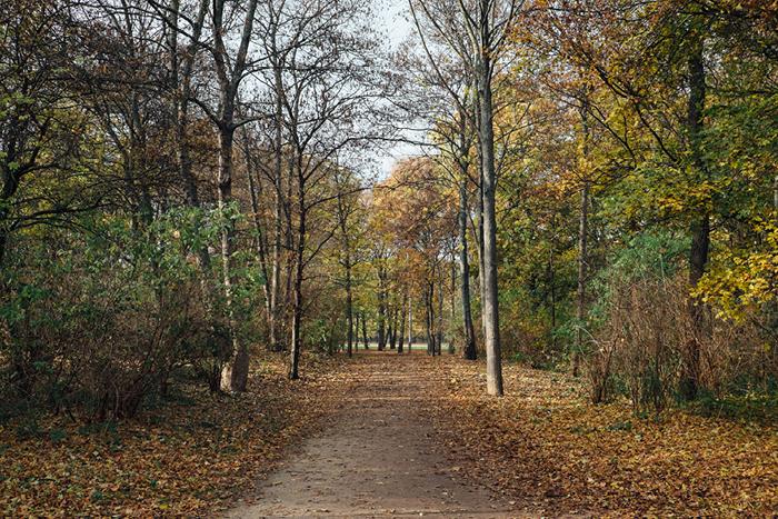 berlin_56