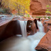 Coyote Gulch Autumn Colors by David Swindler (ActionPhotoTours.com)