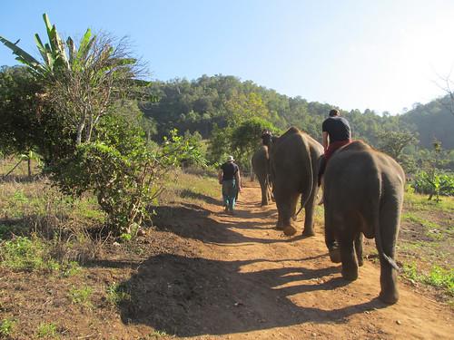 Mae Teng: en raccompagnant à pied les autres membres de notre groupe