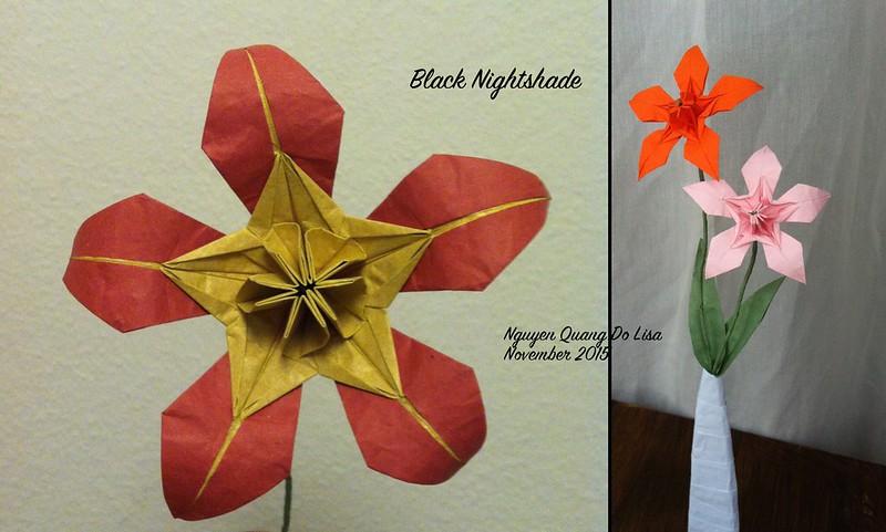 Origami Black Nightshade