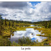 Lac perdu by P.  Richard 