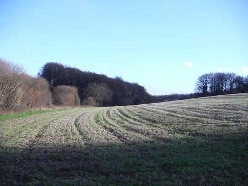View towards Three Gates Farm