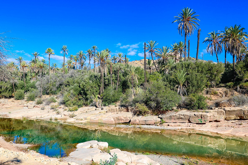 Plan A Road Trip >> Day trip to High Atlas Mountains - finding an oasis in Morocco - Adventurous Miriam