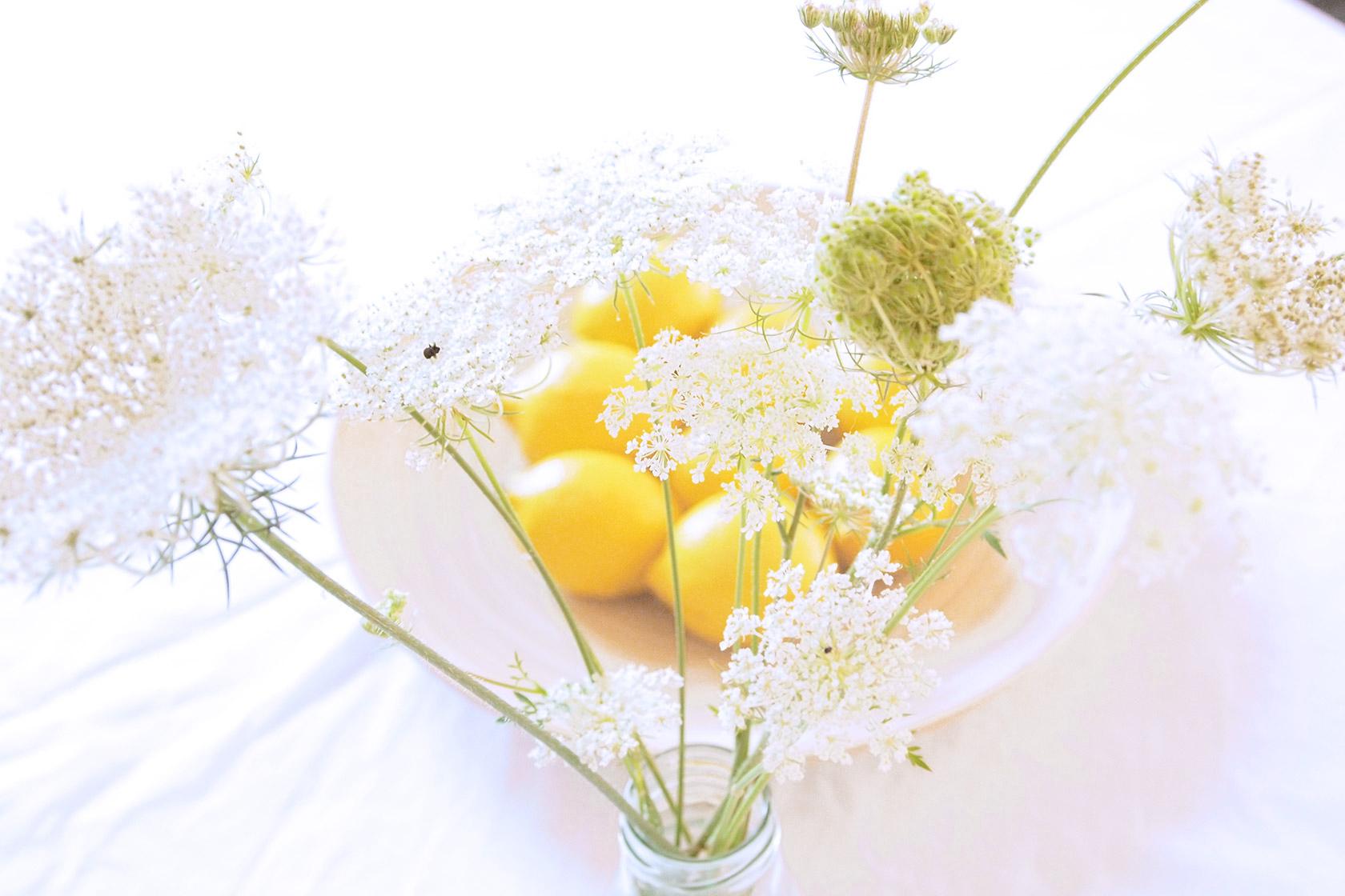 lemon_3a