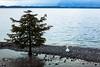 Switzerland: Montreux / Vaud by tisha_razumovsky