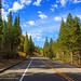 California Fall Colors by der_wigger