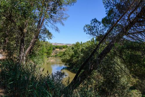 Quintanilla de Arriba. Terraza aluvial