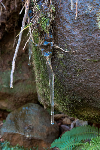 Late fall of icicles