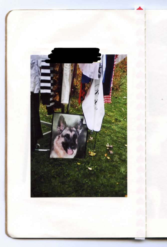 scan738