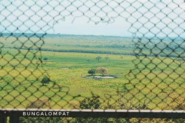 Taman Nasional Baluran/Baluran National Park