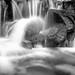 Flowing water by petia.balabanova(tnx for +2 million views)