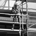 Small photo of Abseiler