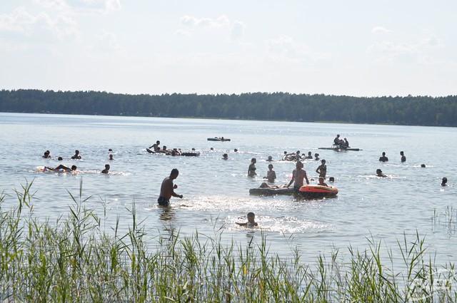 Синові директора РАЕС Муляренко дав 2,8 га лісу біля Білого