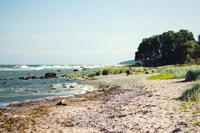 #587 Gotland