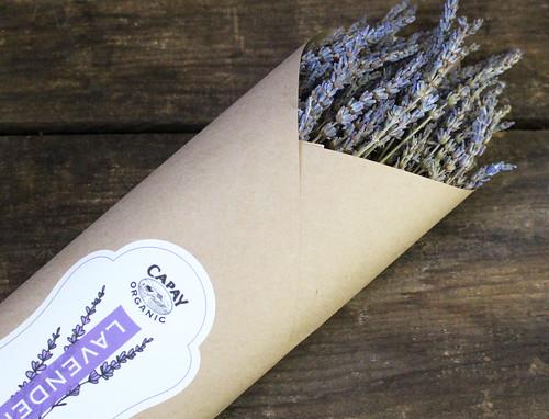 capay organic lavender