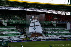 Tifo Sporting vs Cska
