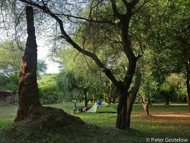 Mango camp: Kapoeta