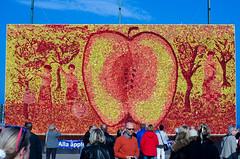 2015-10-04 Äppelmarknad Kivik