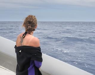 Scan the horizon