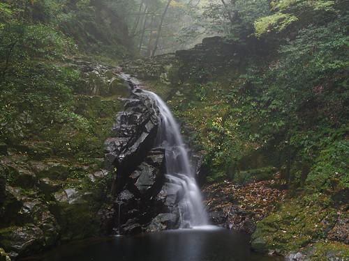 秋の渓(苔湿る匂いにつつまれて)[Explored]