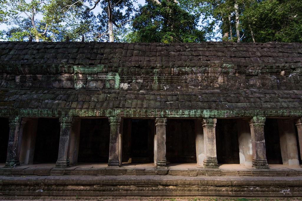 Ta Prohm Angkor-2744
