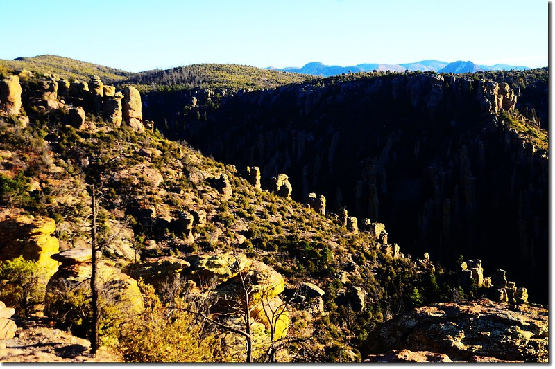 Chiricahua National Monument, AZ (11)
