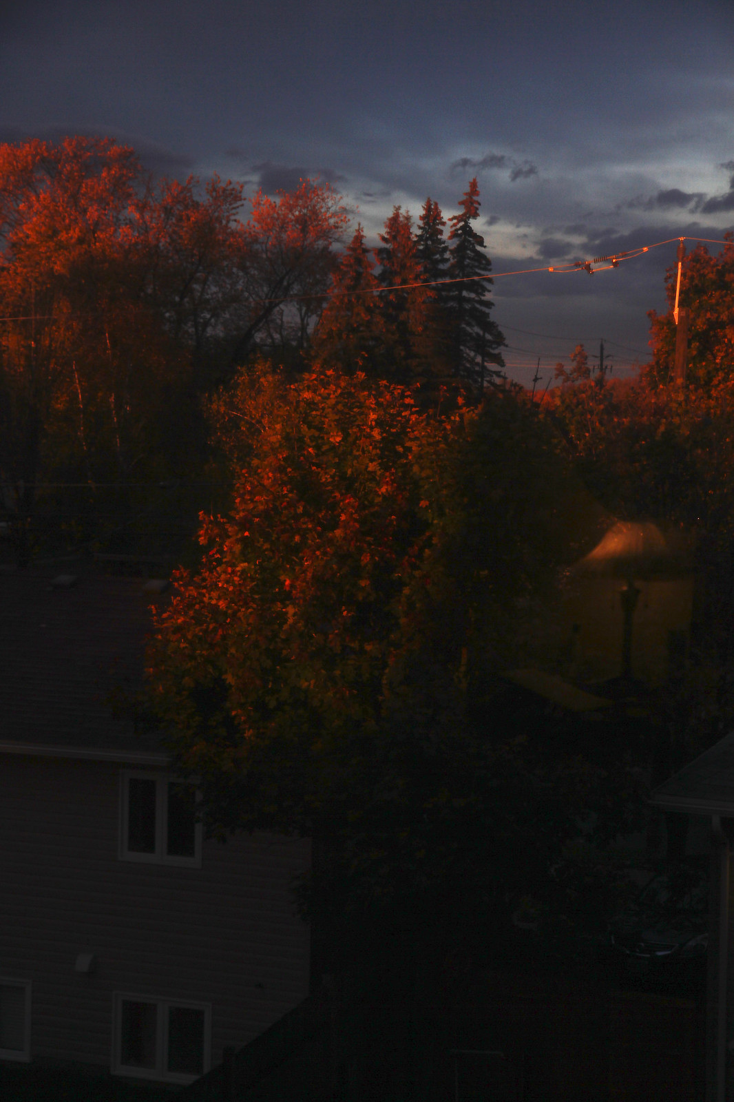 out my window