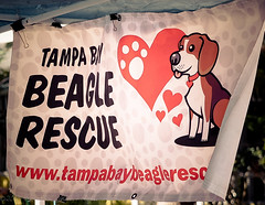 2017-02-25_Get Rescued_Gulfport,Fl-2250059