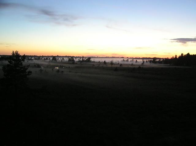 Koigi Bog, Saaremaa
