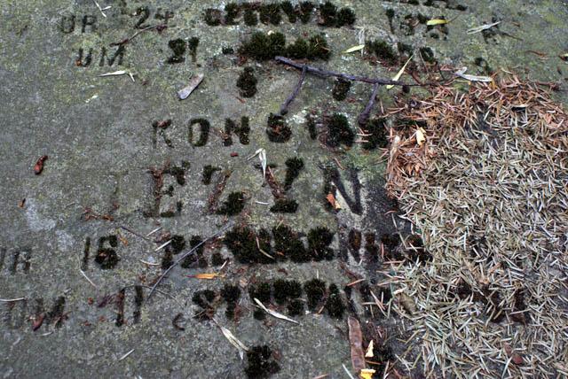 Cimetière Powazki à Varsovie : Quand la mousse rappelle le nom gravé sur la pierre.