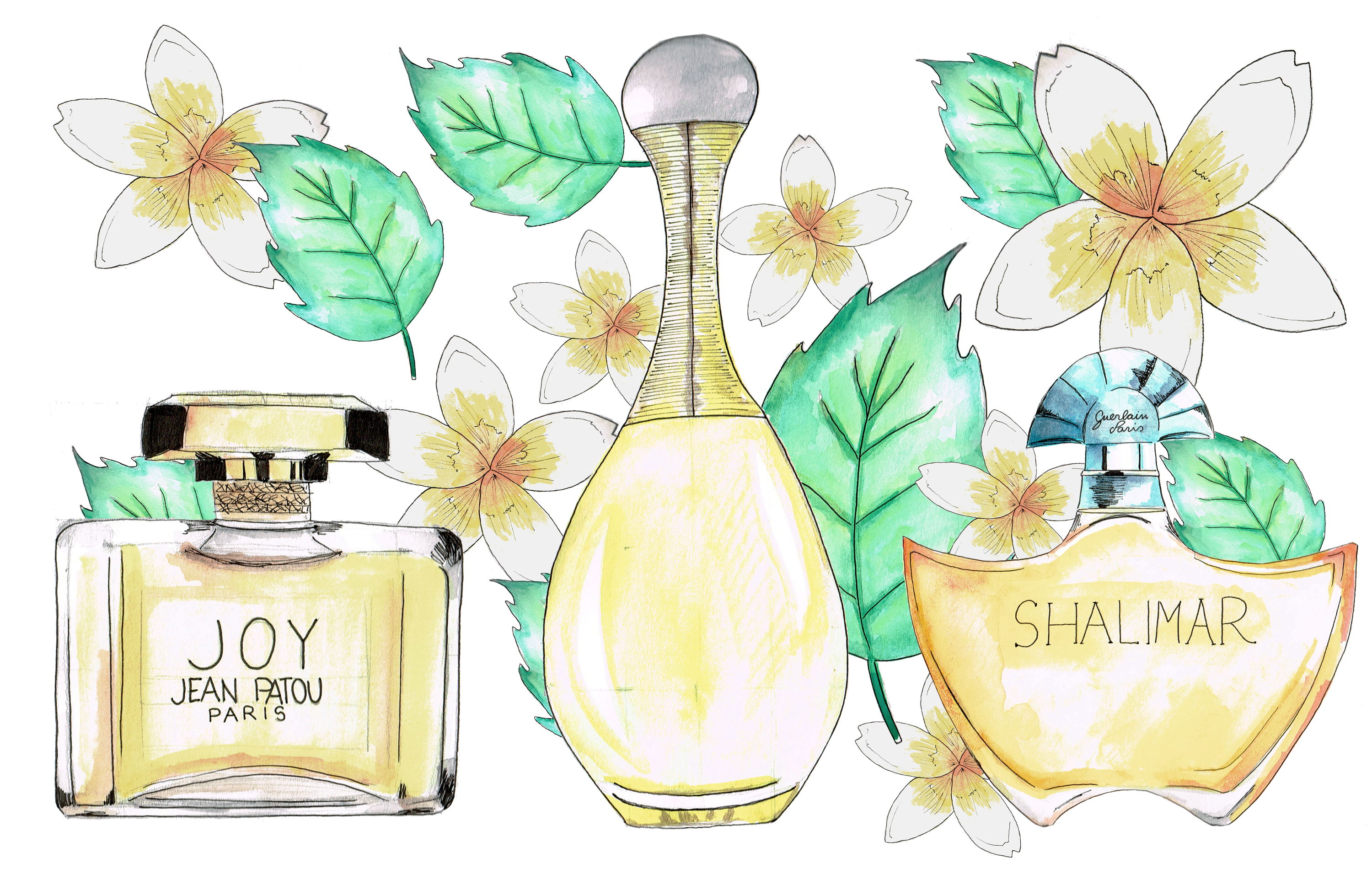 perfumes, watercolor, fashion illustration, iconic perfumes, dolce & gabanna, shalimar, guerlain, dior, Chanel, drawings, 10 most iconic perfumes, fragances, something fashion, valencia fashion blogger,