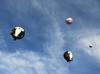 Penguin balloons, Bristol Balloon Festival 2015